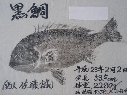 20110201-3.jpg