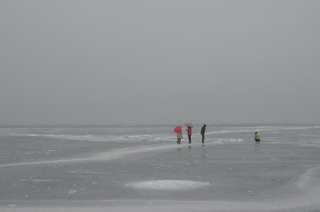 20120206-3.jpg